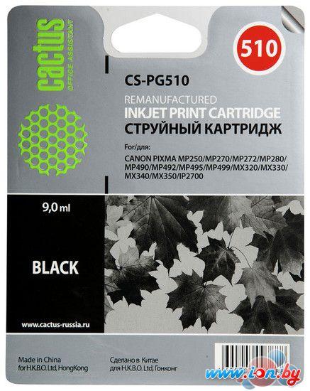 Картридж для принтера CACTUS CS-PG510 в Могилёве
