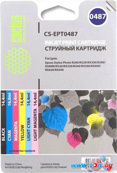 Картридж для принтера CACTUS CS-EPT0487 в Могилёве