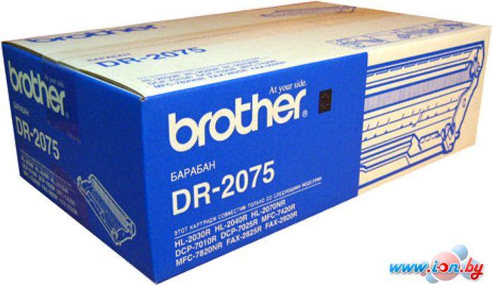 Картридж для принтера Brother DR-2075 в Могилёве