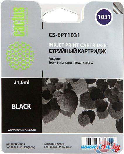Картридж для принтера CACTUS CS-EPT1031 в Могилёве