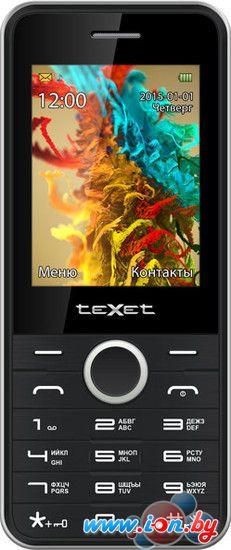 Мобильный телефон TeXet TM-D301 Black/Silver в Могилёве