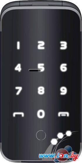 Мобильный телефон Lexand A2 Flip Black в Могилёве