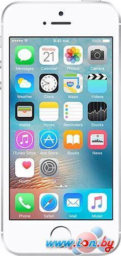 Смартфон Apple iPhone SE 64GB Silver в Могилёве