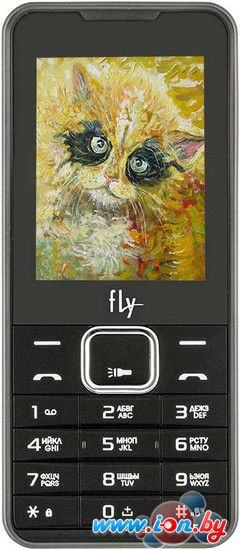 Мобильный телефон Fly FF243 Black в Могилёве