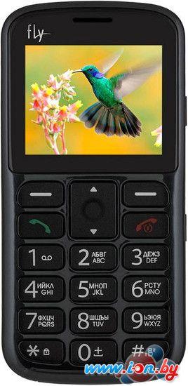 Мобильный телефон Fly Ezzy 8 Grey в Могилёве