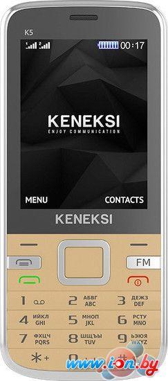 Мобильный телефон Keneksi K5 Gold в Могилёве
