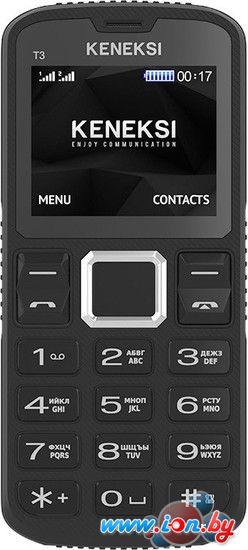 Мобильный телефон Keneksi T3 Black в Могилёве