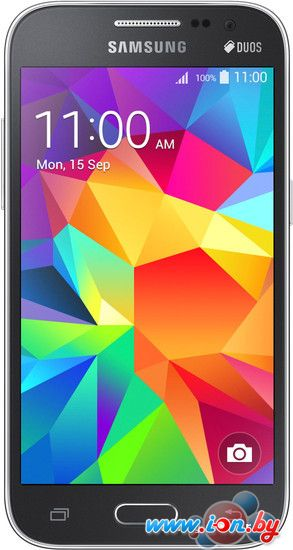 Смартфон Samsung Core Prime VE Gray [G361H] в Могилёве