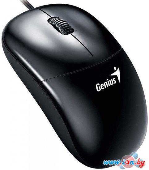 Мышь Genius DX-135 в Могилёве