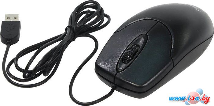 Мышь Genius NetScroll 120 v2 (черный) в Могилёве