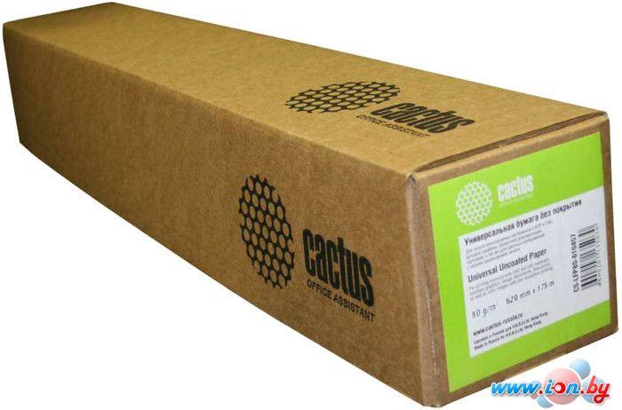 Офисная бумага CACTUS универсальная втулка 610 мм x 45 м [CS-LFP80-610457] в Могилёве
