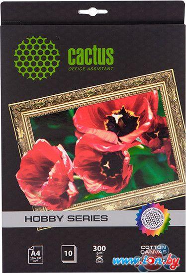 Холст CACTUS Хлопковый холст A4 260 г/кв.м. 10 листов (CS-СA426010) в Могилёве