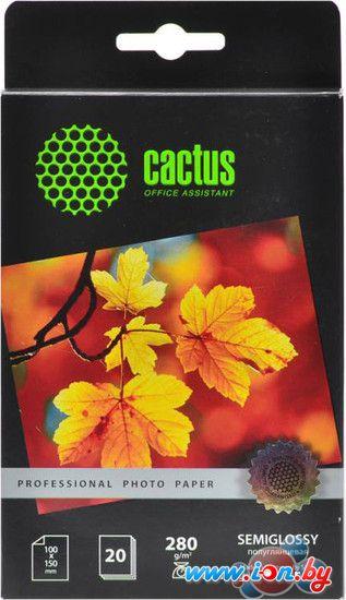 Фотобумага CACTUS Prof Полуглянцевая 10x15 280 г/м2  листов [CS-SGA628020] в Могилёве