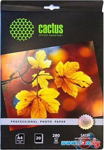 Фотобумага CACTUS Шелковисто-матовая A4 280 г/м2 20 листов [CS-SMA428020] в Могилёве