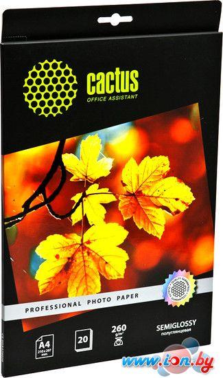 Фотобумага CACTUS Полуглянцевая A4 260 г/кв.м. 20 листов (CS-SGA426020) в Могилёве