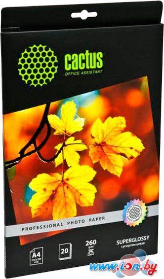 Фотобумага CACTUS Суперглянцевая А4 260 г/м2 20 листов (CS-HGA426020) в Могилёве