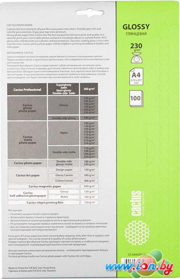 Фотобумага CACTUS Глянцевая A4 230 г/кв.м. 100 листов (CS-GA4230100) в Могилёве