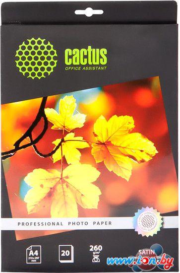 Фотобумага CACTUS Шелковисто-матовая A4 260 г/кв.м. 20 листов (CS-SMA426020) в Могилёве