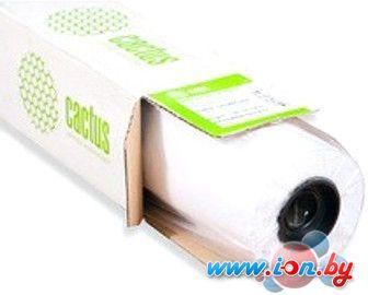 Фотобумага CACTUS Матовая 1067 мм x 30 м 140 г/м2 [CS-PM140-106730] в Могилёве