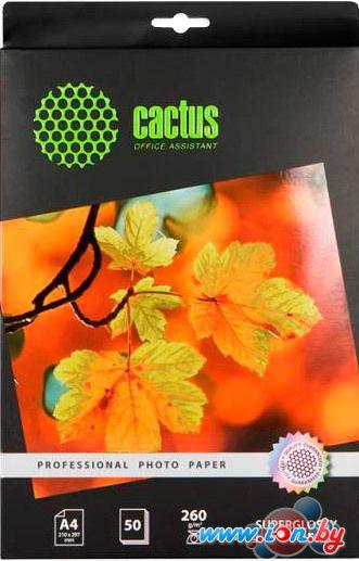 Фотобумага CACTUS Суперглянцевая А4 260 г/м2 50 листов (CS-HGA426050) в Могилёве