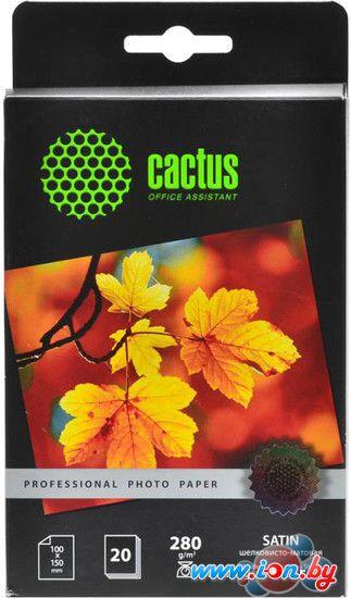 Фотобумага CACTUS Prof Шелковисто-матовая 10x15 280 г/м2 20 листов [CS-SMA628020] в Могилёве