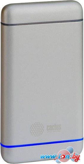 Портативное зарядное устройство CACTUS CS-PBMS028-5000AL Silver в Могилёве