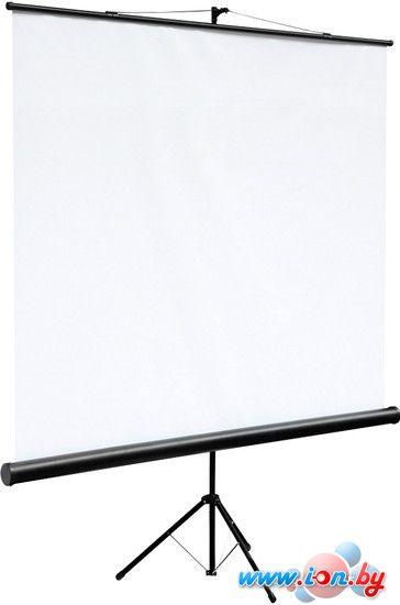 Проекционный экран Digis Kontur-C 200x200 [DSKC-1103] в Могилёве