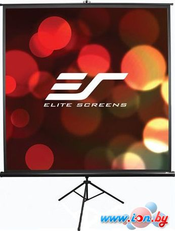 Проекционный экран Elite Screens Tripod 160x163 [T85UWS1] в Могилёве