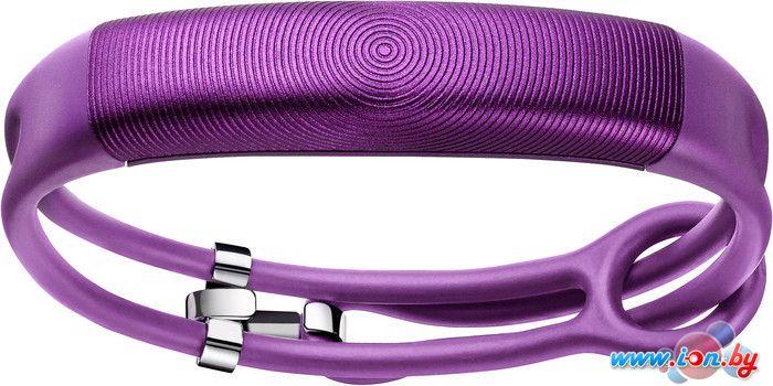 Фитнес-браслет Jawbone Up2 Lightweight Orchid Circle в Могилёве