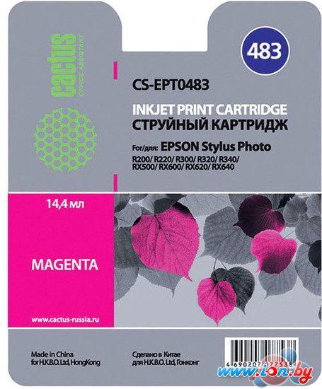 Картридж для принтера CACTUS CS-EPT0483 в Могилёве