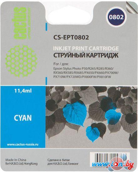 Картридж для принтера CACTUS CS-EPT0802 в Могилёве