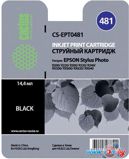 Картридж для принтера CACTUS CS-EPT0481 в Могилёве