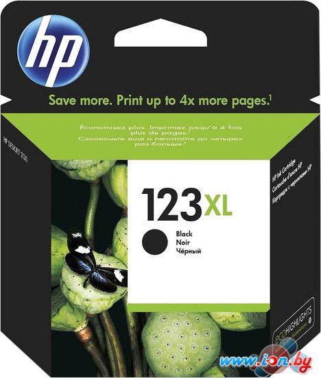 Картридж для принтера HP 123XL [F6V19AE] в Могилёве