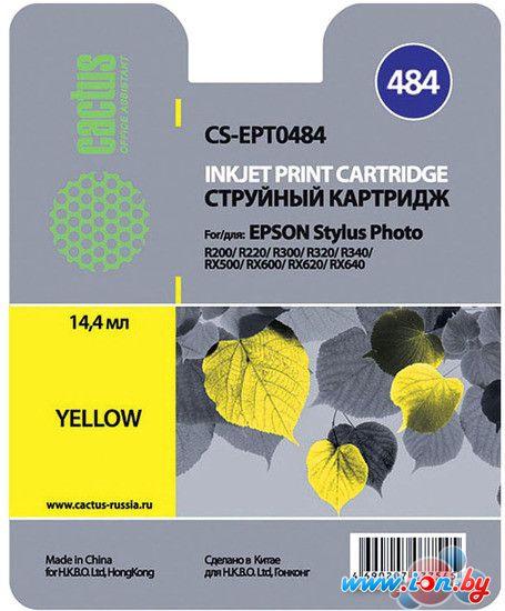 Картридж для принтера CACTUS CS-EPT0484 в Могилёве