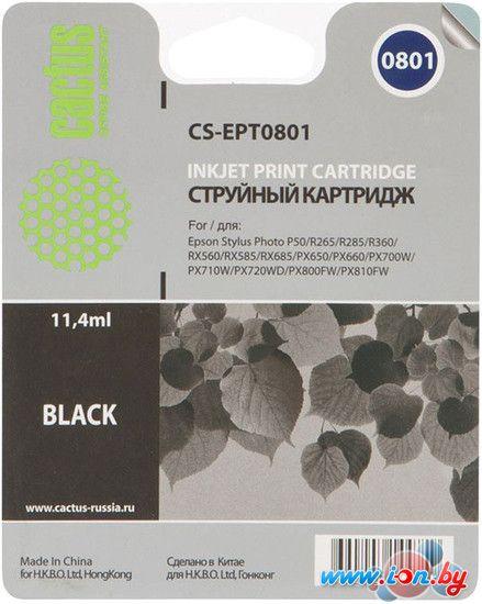 Картридж для принтера CACTUS CS-EPT0801 в Могилёве
