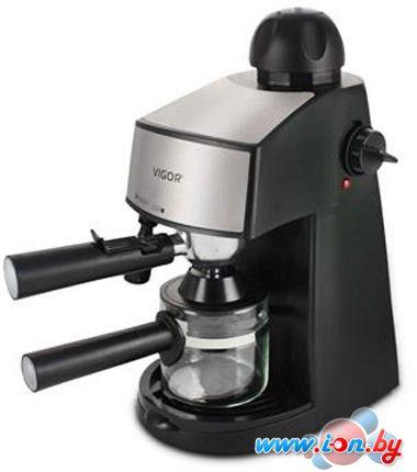 Бойлерная кофеварка Vigor HX-2124 в Могилёве