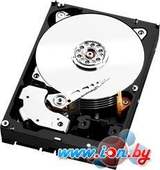 Жесткий диск i.norys 2TB [TP23234A002000A] в Могилёве