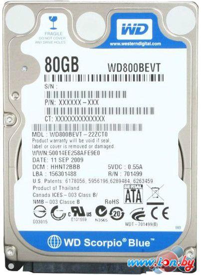 Жесткий диск WD Scorpio Blue 80GB (WD800BEVT) в Могилёве
