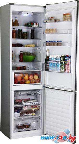 Холодильник Candy CKBS 6200 S в Могилёве