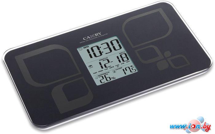 Напольные весы CAMRY EB9506 (черный) в Могилёве