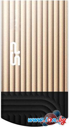 USB Flash Silicon-Power Touch T20 16GB [SP016GBUF2T20V1C] в Могилёве