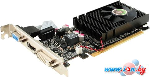 Видеокарта Point of View GeForce GT 730 1GB DDR3 [F-V730-1024B] в Могилёве