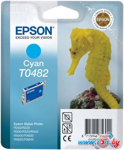 Картридж для принтера Epson EPT04824010 (C13T04824010) в Могилёве