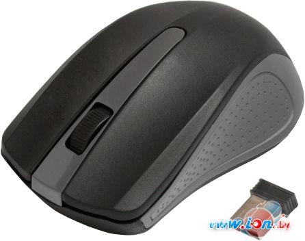 Мышь Ritmix RMW-555 (черный/серый) в Могилёве