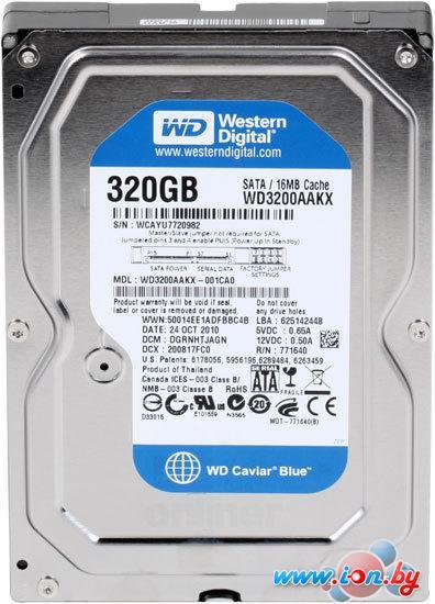 Жесткий диск WD Caviar Blue 320GB (WD3200AAKX) в Витебске