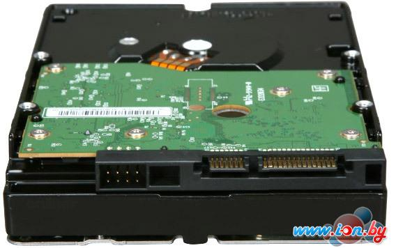 Жесткий диск WD RE4 500 Гб (WD5003ABYX) в Гомеле
