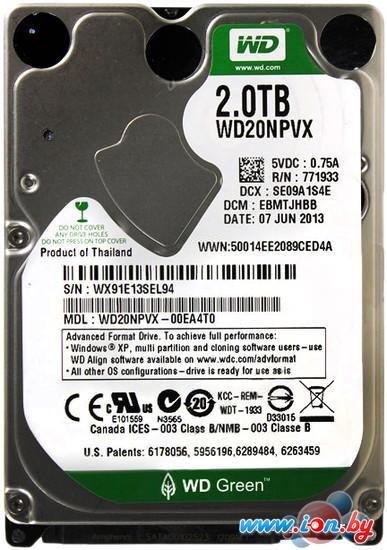 Жесткий диск WD Green 2TB (WD20NPVX) в Могилёве