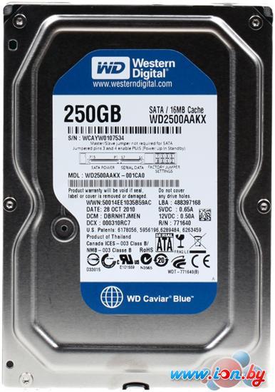 Жесткий диск WD Caviar Blue 250GB (WD2500AAKX) в Могилёве