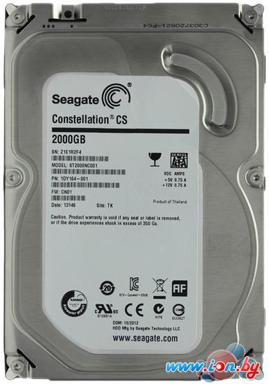 Жесткий диск Seagate Constellation CS 2TB (ST2000NC001) в Витебске