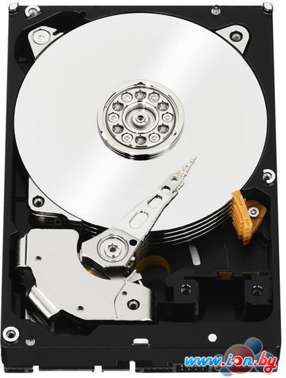 Жесткий диск WD RE 1TB (WD1003FBYZ) в Могилёве